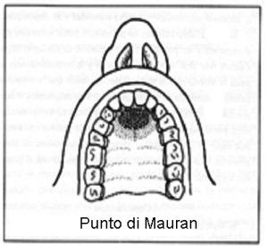 Punto di Mauran